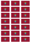 Madrid City Flag Stickers - 21 per sheet